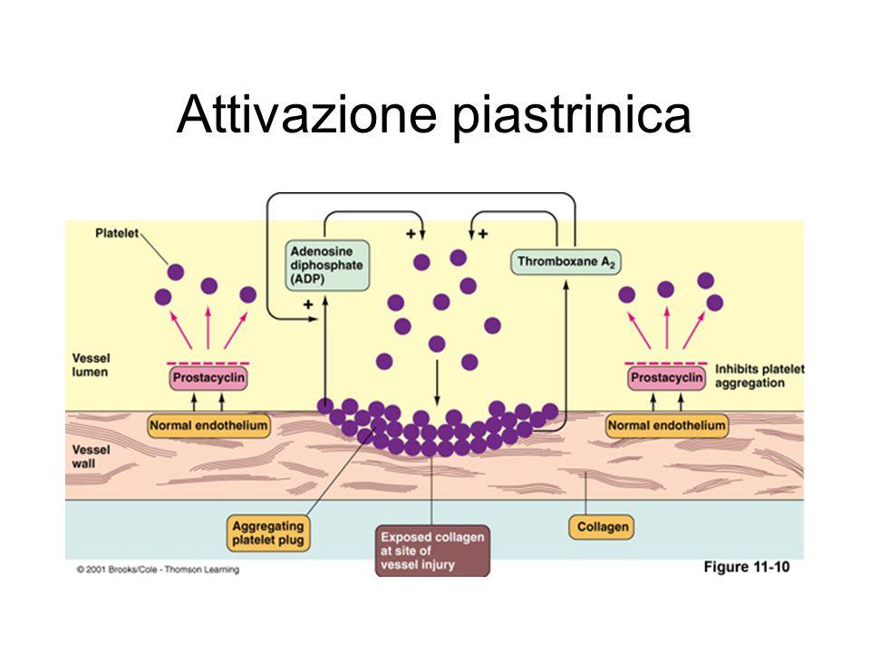 Farmaci interagenti con la glicoproteina IIb/IIIa Anticorpi monoclonali anti-GPIIbIIIa Solo uso ospedaliero Abciximab