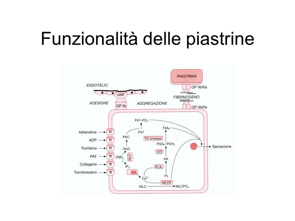Effetti indesiderati dei FANS Il blocco non selettivo delle cicloossigenasi (irreversibile per l'acido acetilsalicilico) comporta alterazioni di molti effetti mediati dai vari prodotti della trasformazione dell'acido arachidonico.