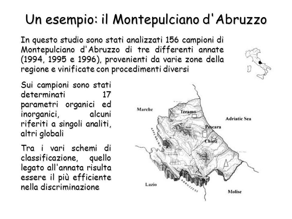 Un esempio: il Montepulciano d Abruzzo In questo studio sono stati analizzati 156 campioni di Montepulciano d Abruzzo di tre differenti annate (1994, 1995 e 1996), provenienti da varie zone della regione e vinificate con procedimenti diversi Sui campioni sono stati determinati 17 parametri organici ed inorganici, alcuni riferiti a singoli analiti, altri globali Tra i vari schemi di classificazione, quello legato all annata risulta essere il più efficiente nella discriminazione