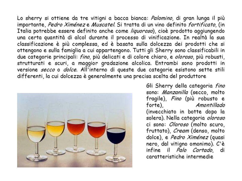 Lo sherry si ottiene da tre vitigni a bacca bianca: Palomino, di gran lunga il più importante, Pedro Ximénez e Muscatel.