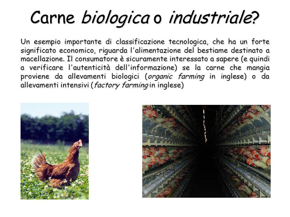 Un esempio importante di classificazione tecnologica, che ha un forte significato economico, riguarda l alimentazione del bestiame destinato a macellazione.