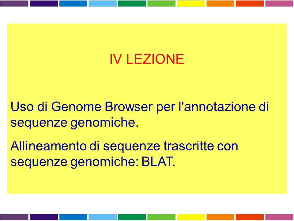 Known Genes Dense Genome Browser: display mode