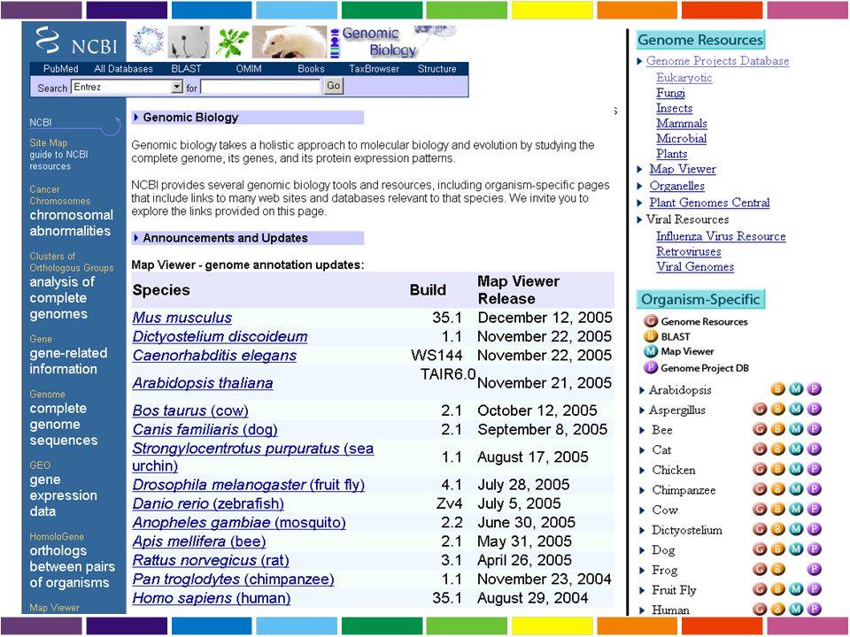 GNF Gene Expression Atlas Ratios Using Affymetrix GeneChips Dati d'espressione ottenuti dall'analisi di Affymetrix GeneChips GNF (The Genomics Institute of the Novartis Research Foundation).