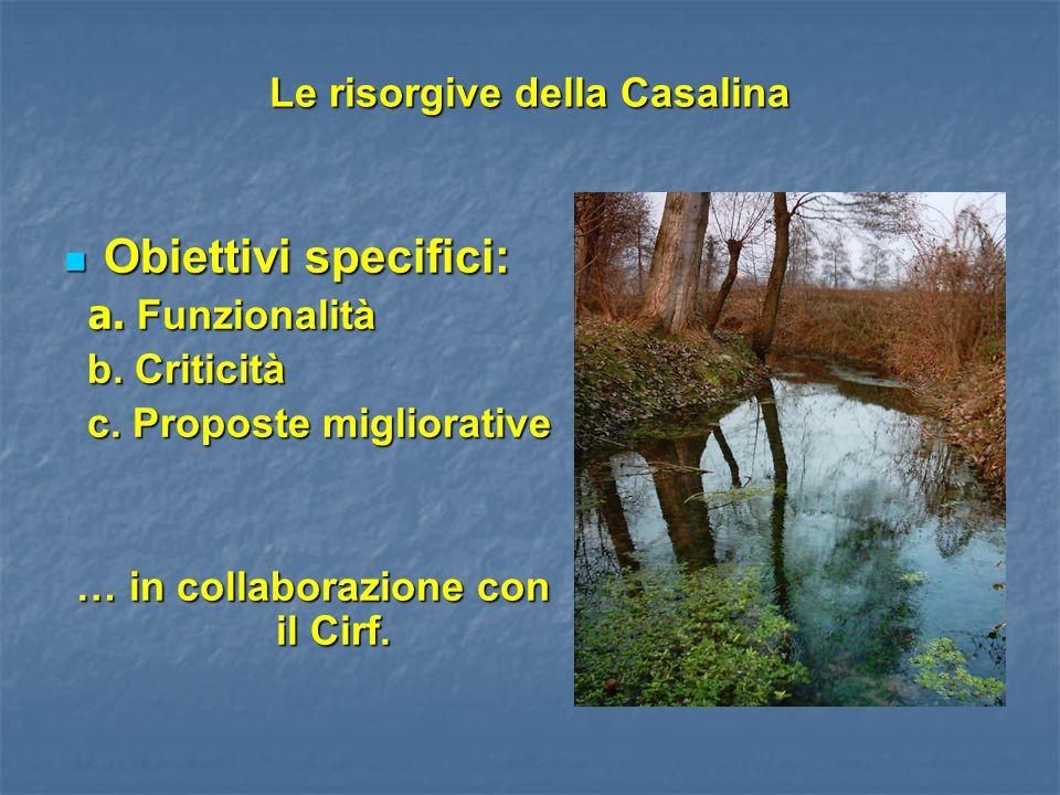 Le risorgive della Casalina Obiettivi specifici: Obiettivi specifici: a. Funzionalità a. Funzionalità b. Criticità b. Criticità c. Proposte migliorati