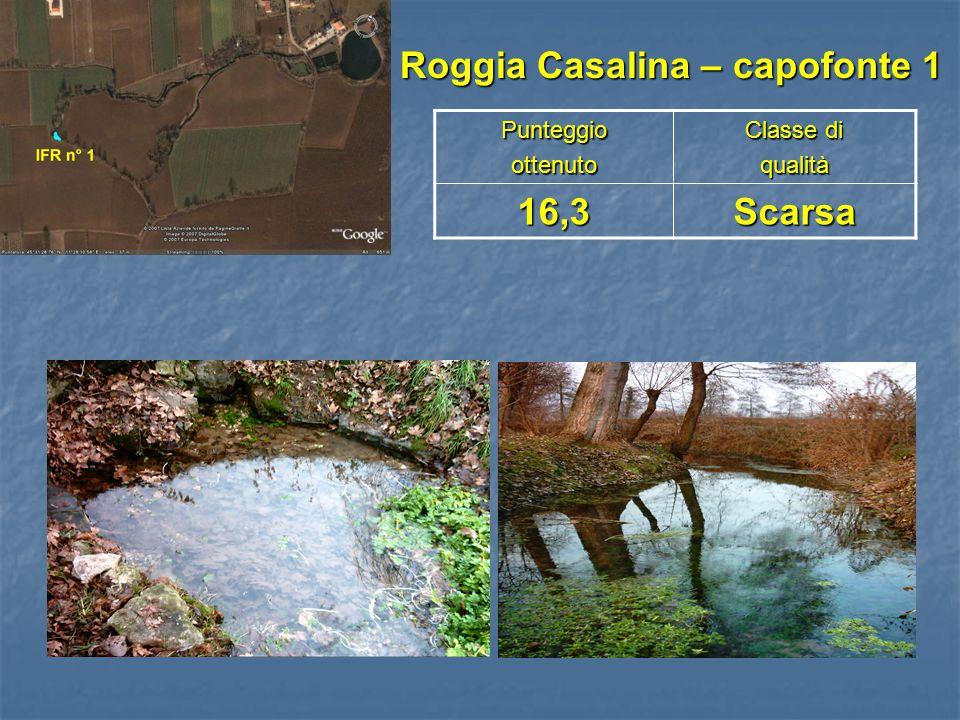 Roggia Casalina – capofonte 1 Roggia Casalina – capofonte 1Punteggioottenuto Classe di qualità16,3Scarsa