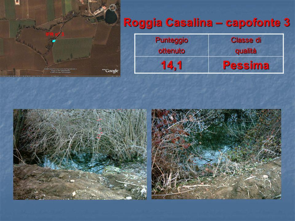 Roggia Casalina – capofonte 3 Roggia Casalina – capofonte 3Punteggioottenuto Classe di qualità14,1Pessima
