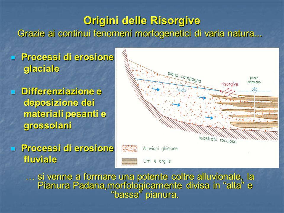 Origini delle Risorgive Grazie ai continui fenomeni morfogenetici di varia natura... Processi di erosione Processi di erosione glaciale glaciale Diffe