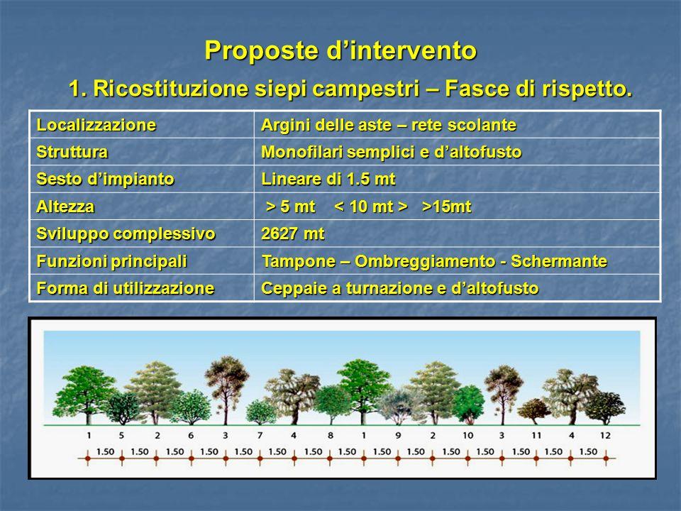 Proposte d'intervento 1. Ricostituzione siepi campestri – Fasce di rispetto. Localizzazione Argini delle aste – rete scolante Struttura Monofilari sem