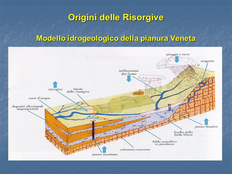Origini delle Risorgive Modello idrogeologico della pianura Veneta