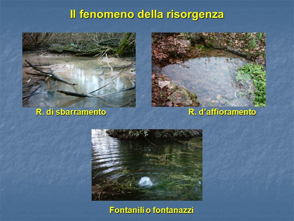 Il fenomeno della risorgenza R. di sbarramento R. d'affioramento R. di sbarramento R. d'affioramento Fontanili o fontanazzi Fontanili o fontanazzi