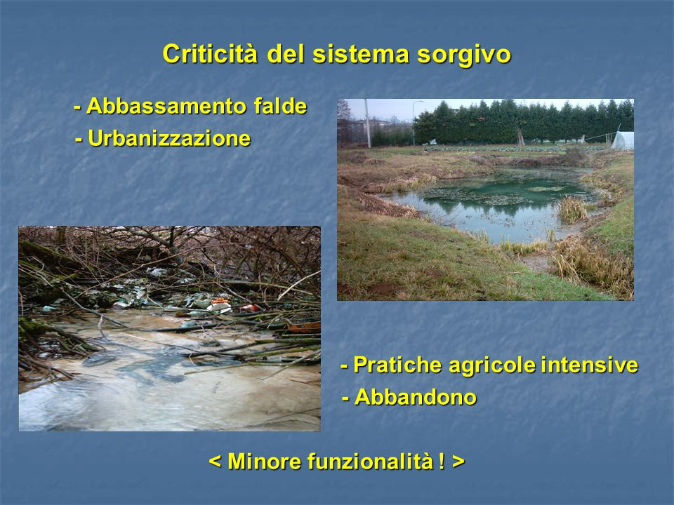 Criticità del sistema sorgivo - Abbassamento falde - Abbassamento falde - Urbanizzazione - Urbanizzazione - Pratiche agricole intensive - Pratiche agr