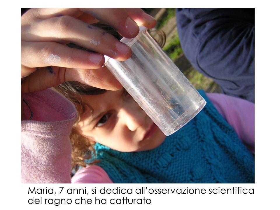 Salvatore, 6 anni, mostra con orgoglio l'insetto che ha catturato e sistemato nella provetta