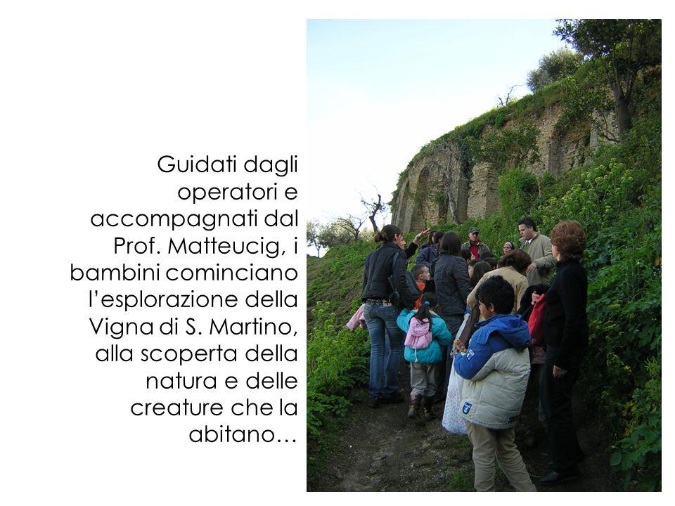 Il Laboratorio OSCOM presso la Vigna di S. Martino L'esperienza della visita guidata presso la Vigna di S.Martino ha portato i bambini, guidati da un