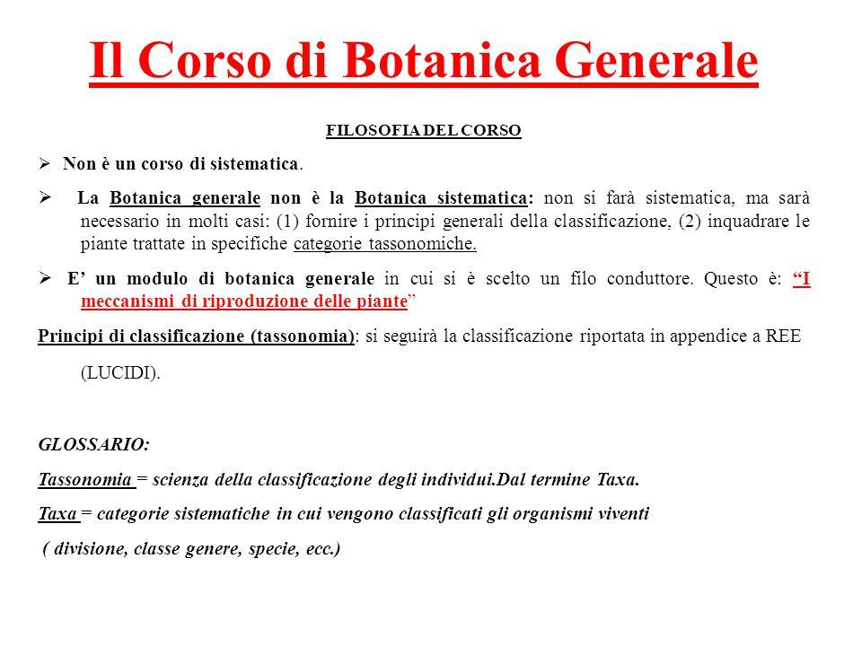Il Corso di Botanica Generale FILOSOFIA DEL CORSO  Non è un corso di sistematica.