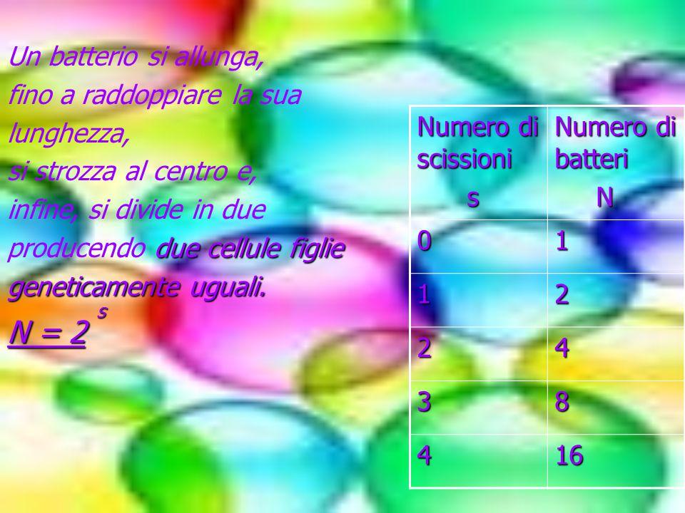 LOGARITMO Il logaritmo di un numero (positivo) in una data base ( positiva e diversa da 1) è l'esponente da dare alla base per ottenere il numero dato (detto argomento).