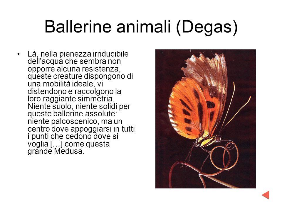 Ballerine animali (Degas) Là, nella pienezza irriducibile dell'acqua che sembra non opporre alcuna resistenza, queste creature dispongono di una mobil