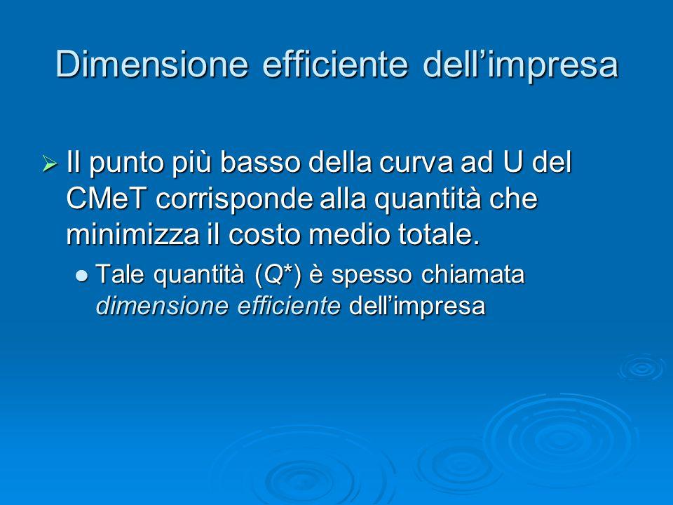 Dimensione efficiente dell'impresa  Il punto più basso della curva ad U del CMeT corrisponde alla quantità che minimizza il costo medio totale. Tale