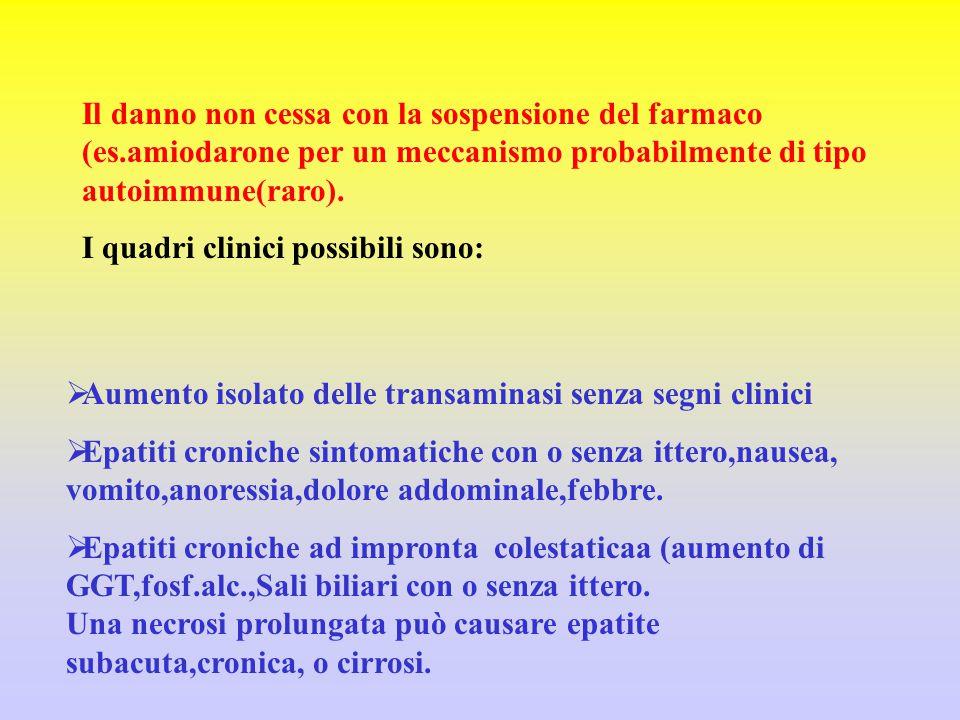 Il danno non cessa con la sospensione del farmaco (es.amiodarone per un meccanismo probabilmente di tipo autoimmune(raro). I quadri clinici possibili