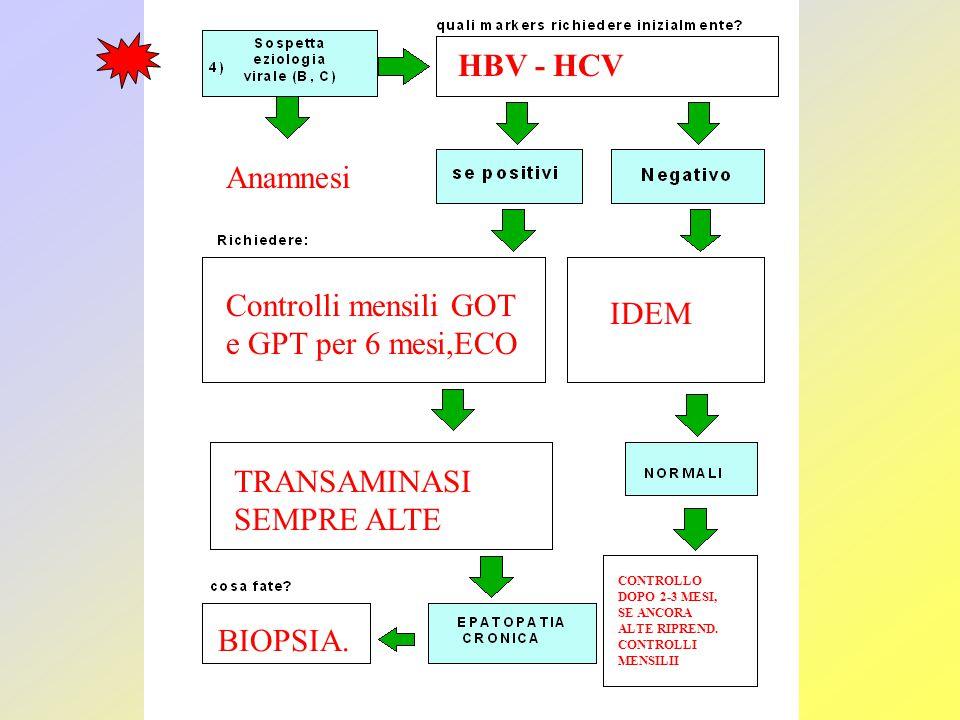 Anamnesi HBV - HCV Controlli mensili GOT e GPT per 6 mesi,ECO IDEM TRANSAMINASI SEMPRE ALTE BIOPSIA. CONTROLLO DOPO 2-3 MESI, SE ANCORA ALTE RIPREND.