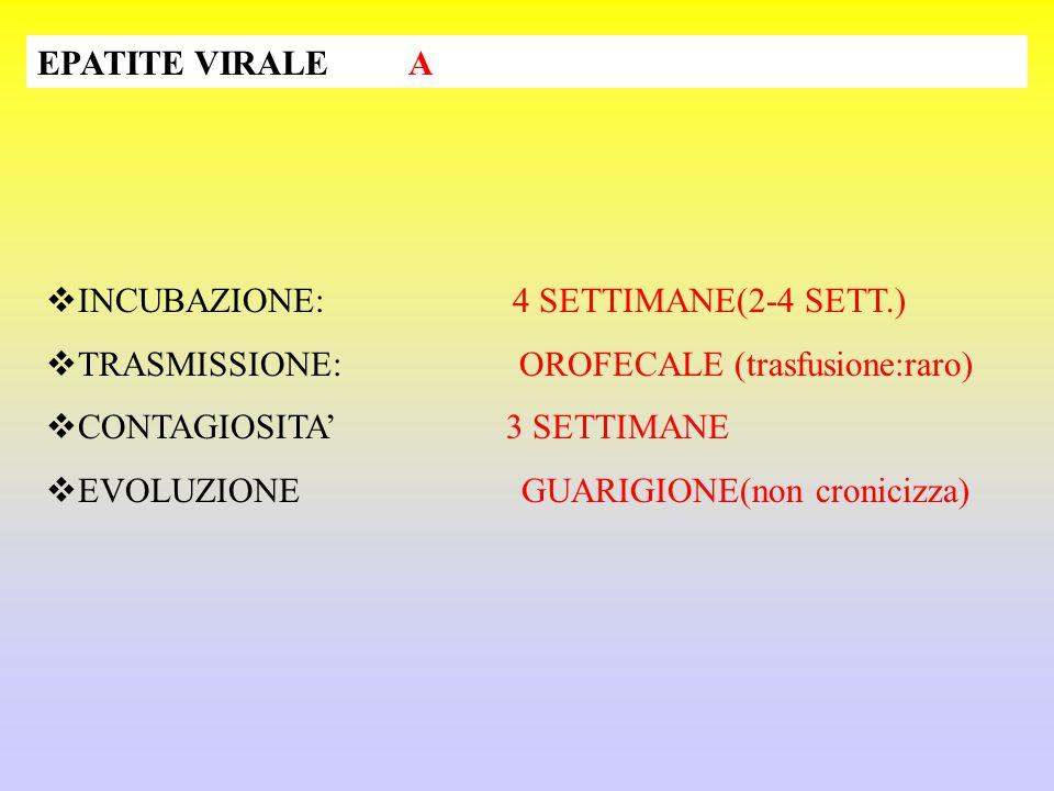 EPATITE VIRALE A  INCUBAZIONE: 4 SETTIMANE(2-4 SETT.)  TRASMISSIONE: OROFECALE (trasfusione:raro)  CONTAGIOSITA' 3 SETTIMANE  EVOLUZIONE GUARIGIONE(non cronicizza)