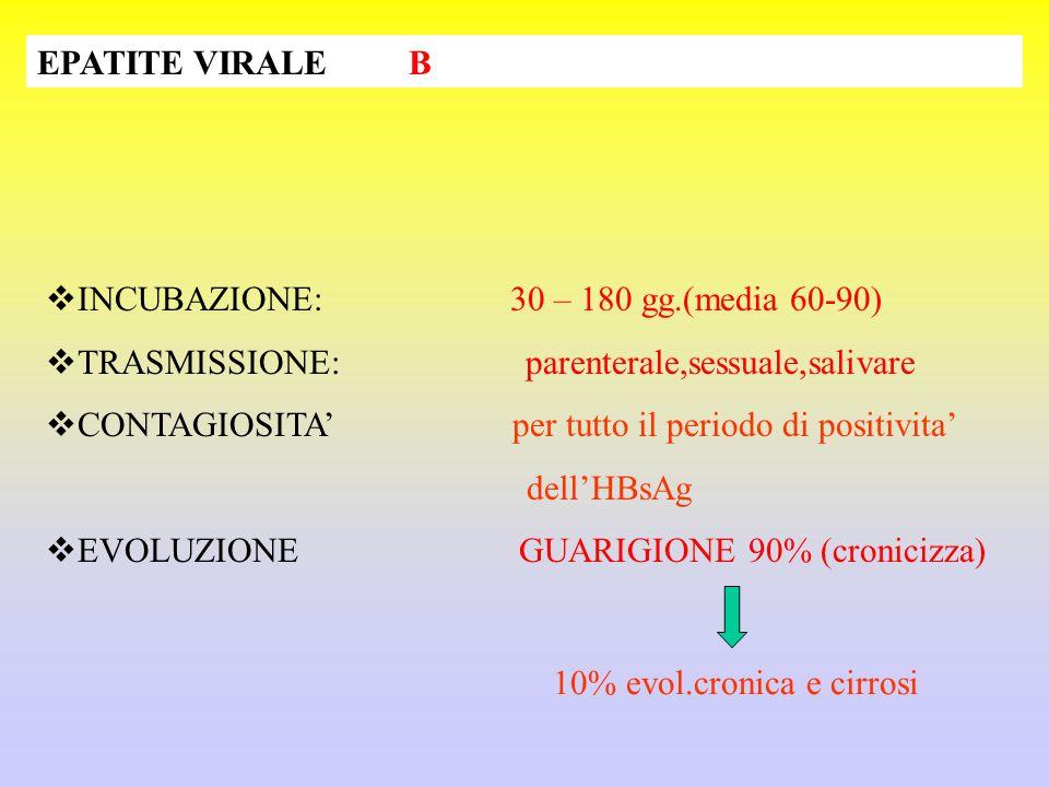 EPATITE VIRALE B  INCUBAZIONE: 30 – 180 gg.(media 60-90)  TRASMISSIONE: parenterale,sessuale,salivare  CONTAGIOSITA' per tutto il periodo di positi