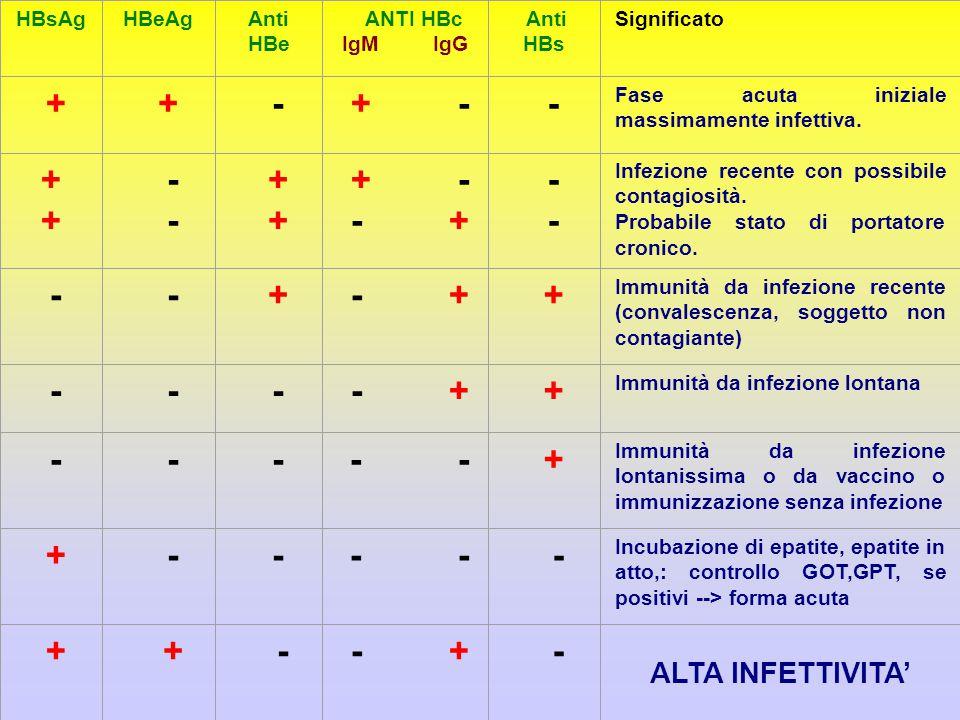 HBsAgHBeAgAnti HBe ANTI HBc IgM IgG Anti HBs Significato + + - + - - Fase acuta iniziale massimamente infettiva.