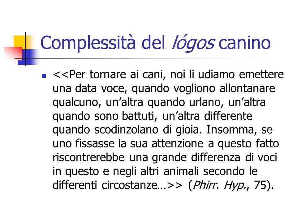 E infine… il cane logicizzante Secondo Crisippo, poi, che particolarmente si batte in difesa (sympolemoûnta) degli animali irragionevoli, il cane partecipa anche della tanto celebrata dialettica.