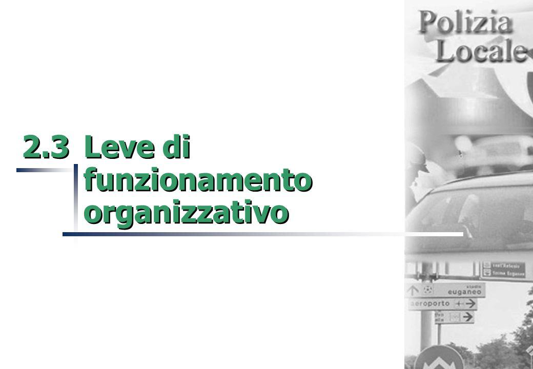 2.3Leve di funzionamento organizzativo