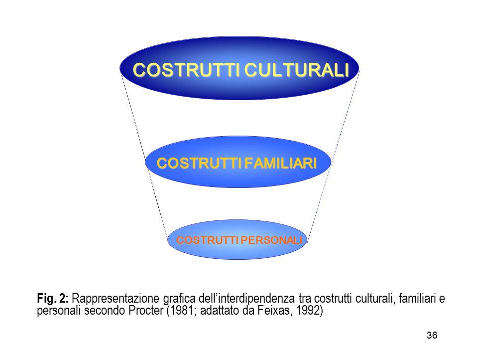 36 COSTRUTTI CULTURALI COSTRUTTI FAMILIARI COSTRUTTI PERSONALI Fig.