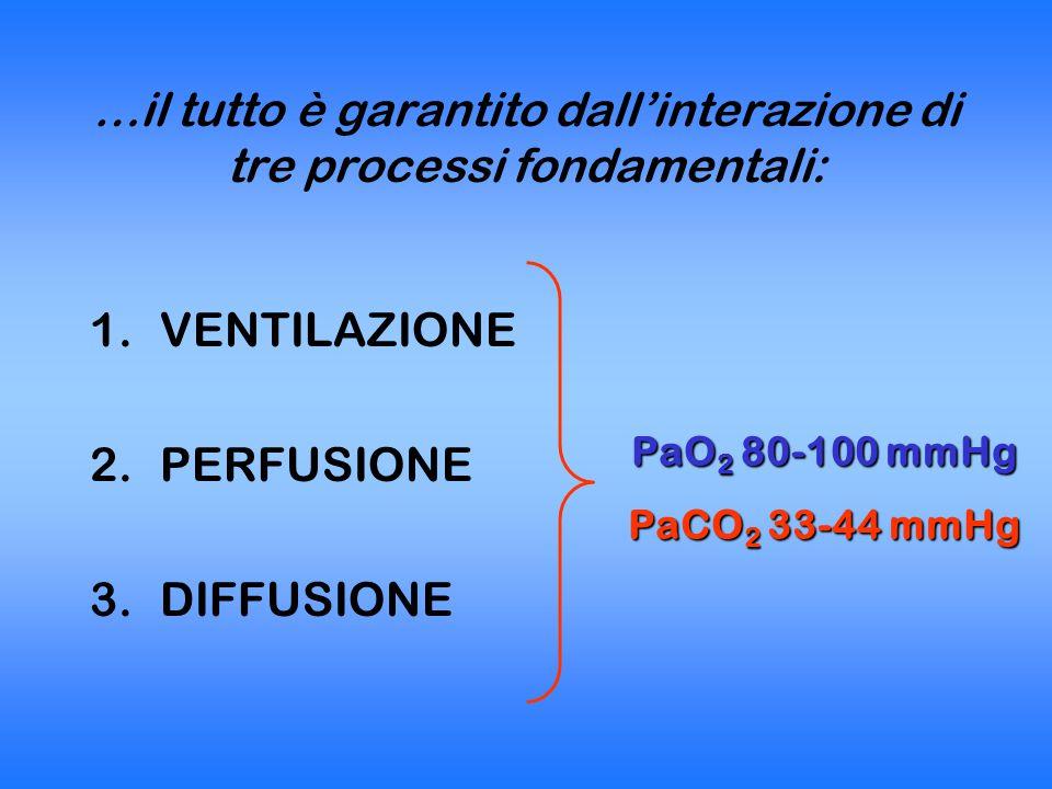 VENTILAZIONE Passaggio di aria dall'ambiente esterno alle vie respiratorie e viceversa VT Volume corrente : volume di ogni singolo atto respiratorio 8 ml/Kg FR Frequenza respiratoria: 8-10 atti/min VM Volume minuto: VT X FR = 500 ml x 10= 5 L/min VD Spazio morto anatomico + fisiologico 150 ml (vie aeree) + alveoli vent non perf VENTILAZIONE ALVEOLARE VA= VM – VD = (VT-VD) X FR