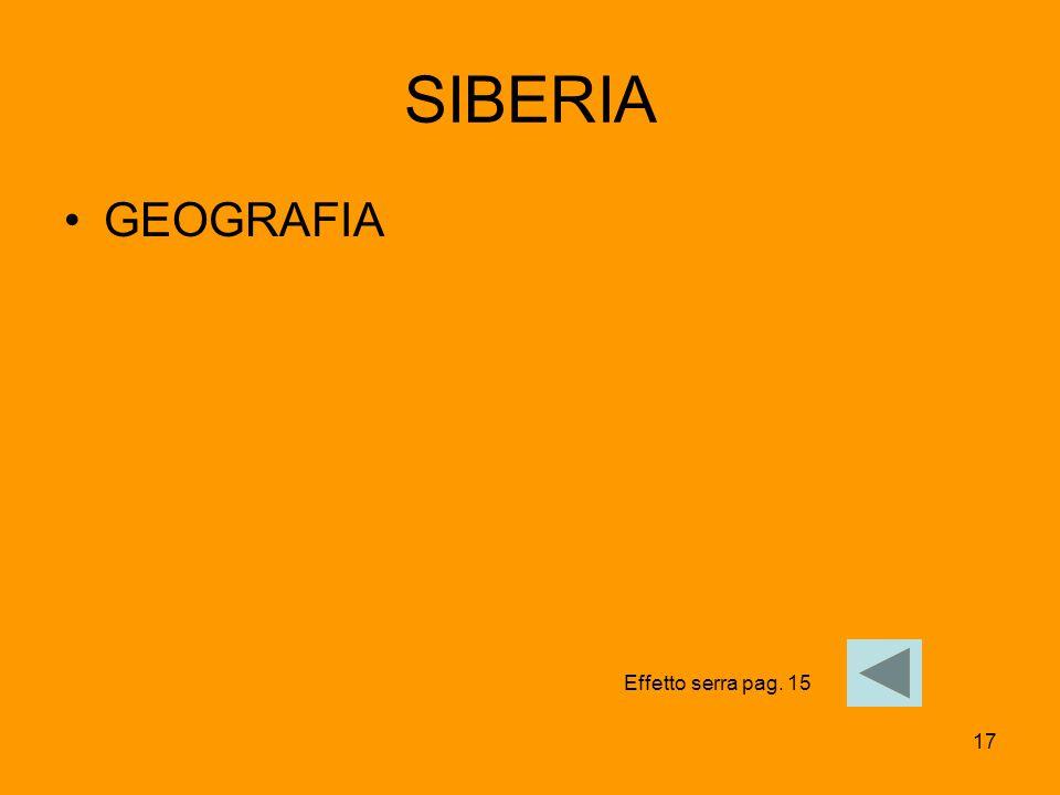 17 SIBERIA GEOGRAFIA Effetto serra pag. 15