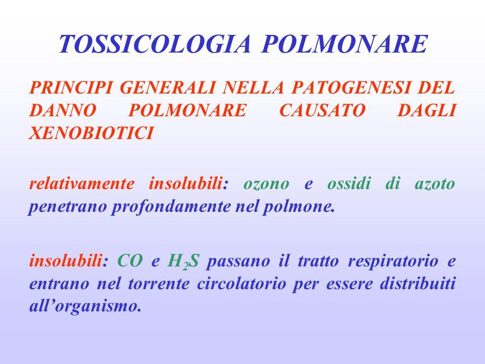 PRINCIPI GENERALI NELLA PATOGENESI DEL DANNO POLMONARE CAUSATO DAGLI XENOBIOTICI relativamente insolubili: ozono e ossidi di azoto penetrano profondam