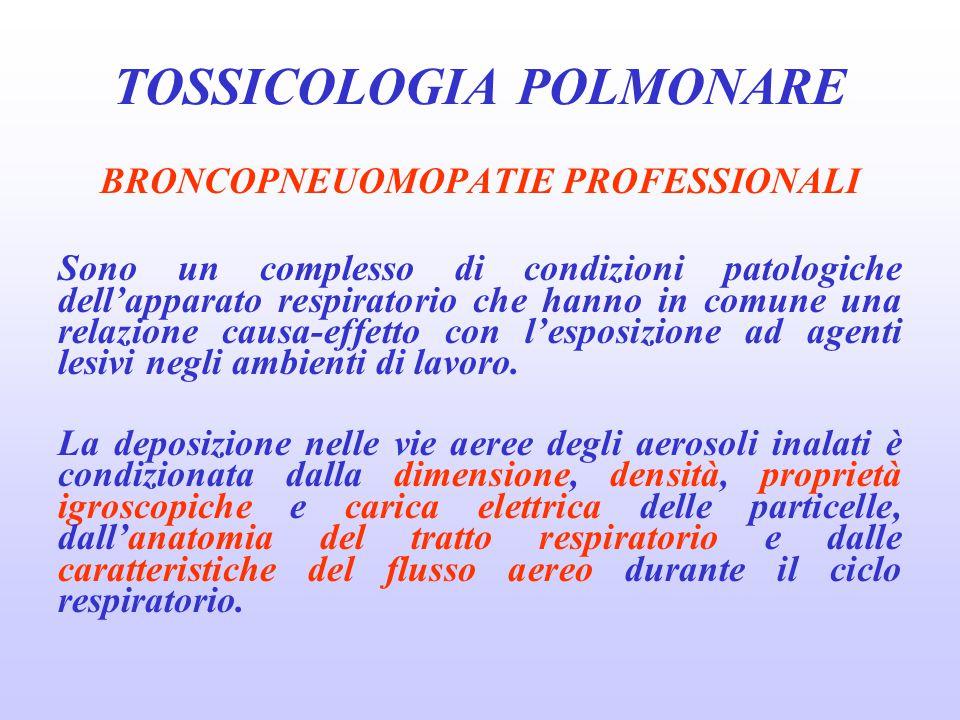 BRONCOPNEUOMOPATIE PROFESSIONALI Sono un complesso di condizioni patologiche dell'apparato respiratorio che hanno in comune una relazione causa-effett