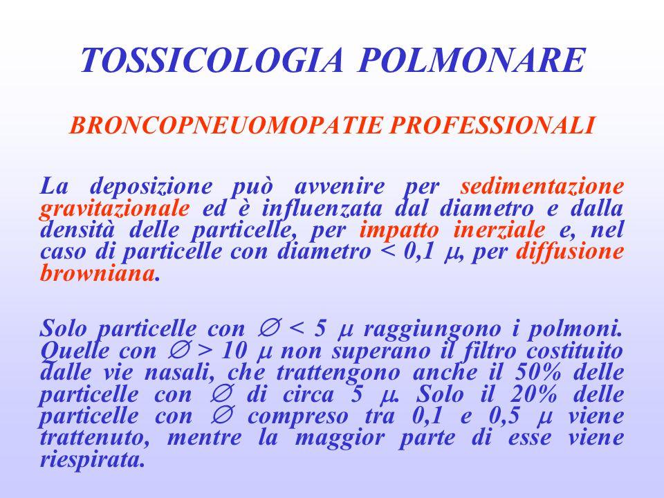 BRONCOPNEUOMOPATIE PROFESSIONALI La deposizione può avvenire per sedimentazione gravitazionale ed è influenzata dal diametro e dalla densità delle par
