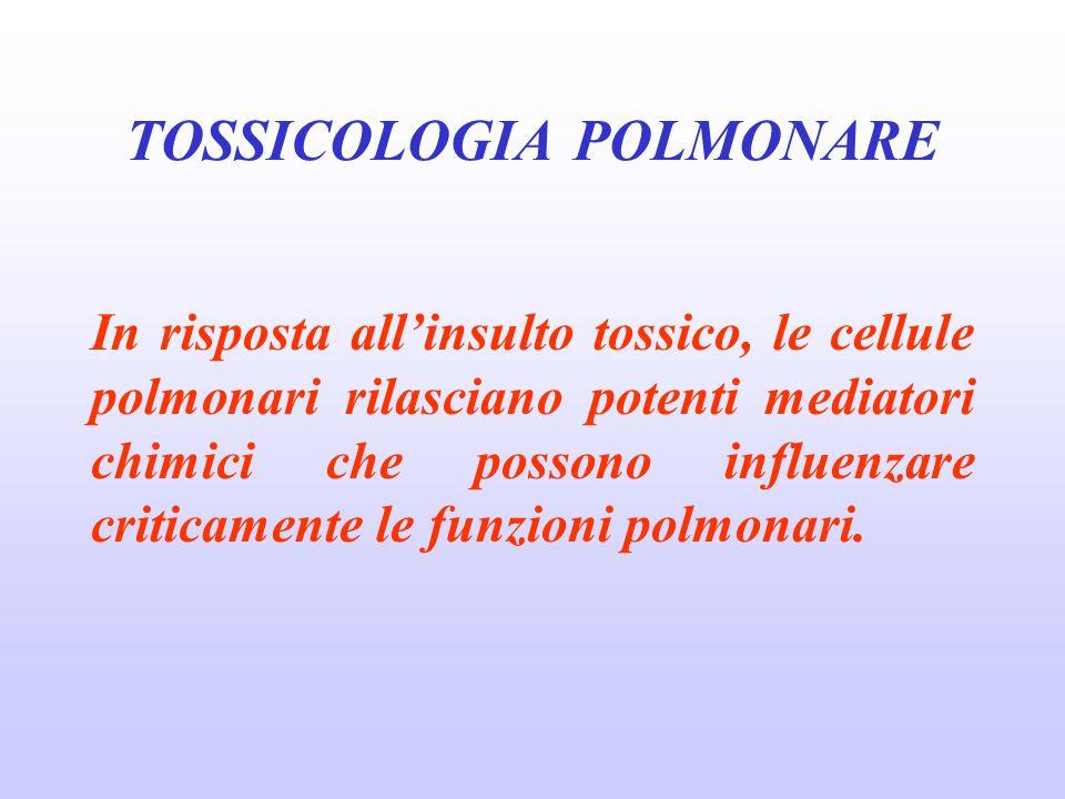 ALTRE PNEUMOPATIE Pneumoconiosi da altri silicati: talcosi, caolinosi Pneumoconiosi da polveri miste: antracosi, baritosi, stannosi, ceriosi, alluminosi, siderosi Pneumoconiosi da polveri miste a basso contenuto in silice libera: pneumoconiosi dei minatori di carbone, siderosilicosi, liparosi TOSSICOLOGIA POLMONARE