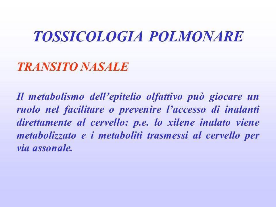 BRONCOPNEUOMOPATIE PROFESSIONALI Sono un complesso di condizioni patologiche dell'apparato respiratorio che hanno in comune una relazione causa-effetto con l'esposizione ad agenti lesivi negli ambienti di lavoro.