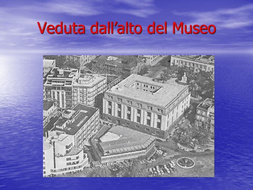 Veduta dall'alto del Museo