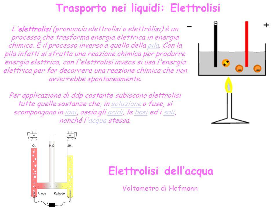 L elettrolisi (pronuncia elettrolìsi o elettròlisi) è un processo che trasforma energia elettrica in energia chimica.