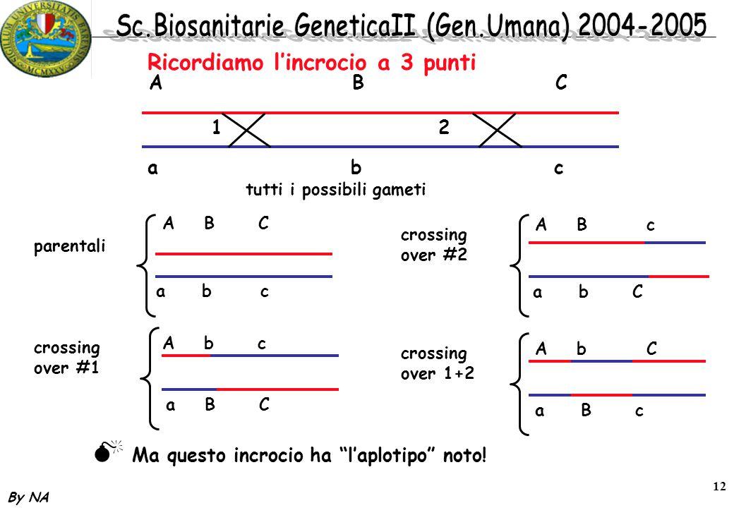 By NA 12 Ricordiamo l'incrocio a 3 punti A BC abcabc tutti i possibili gameti A B C a b c parentali 1 2 crossing over #1 A b c a B C crossing over #2