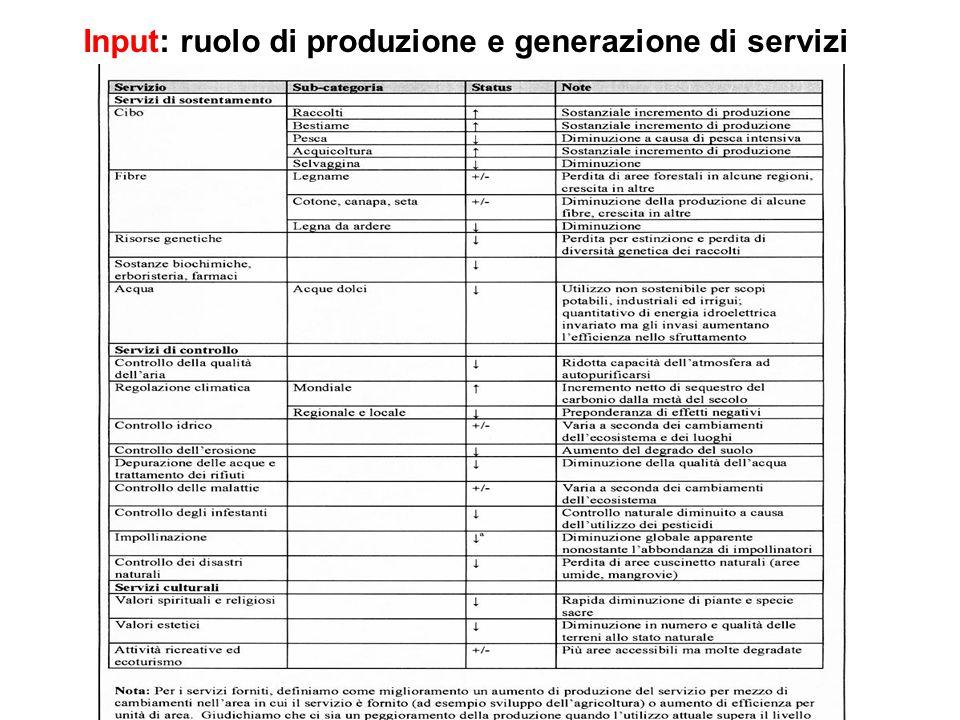 Input: ruolo di produzione e generazione di servizi