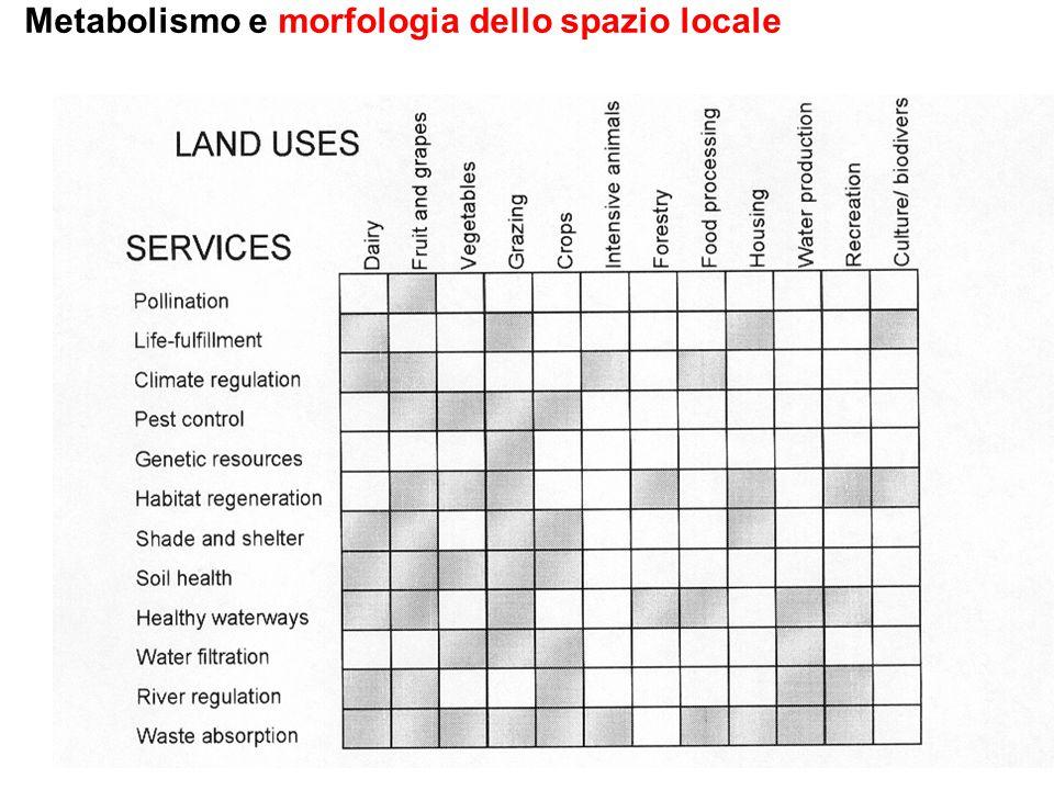 Metabolismo e morfologia dello spazio locale