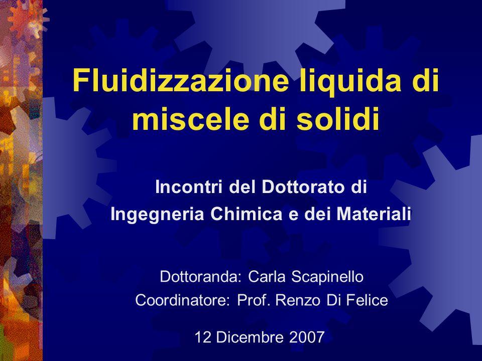 Fluidizzazione liquida di miscele di solidi 12 Dicembre 2007 Incontri del Dottorato di Ingegneria Chimica e dei Materiali Dottoranda: Carla Scapinello Coordinatore: Prof.