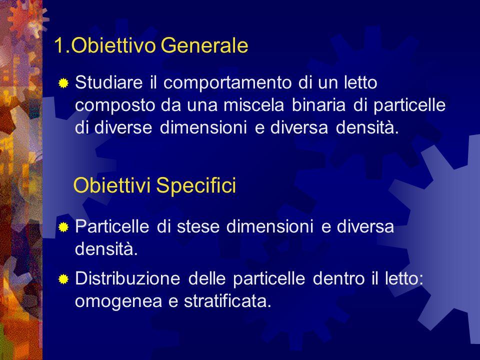 1.Obiettivo Generale  Studiare il comportamento di un letto composto da una miscela binaria di particelle di diverse dimensioni e diversa densità.
