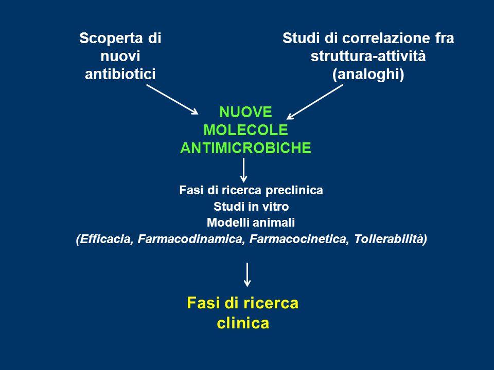 Scoperta di nuovi antibiotici Studi di correlazione fra struttura-attività (analoghi) NUOVE MOLECOLE ANTIMICROBICHE Fasi di ricerca preclinica Studi i