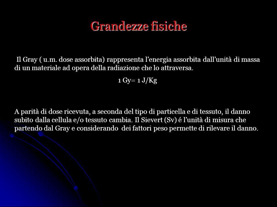 Grandezze fisiche Il Gray ( u.m.