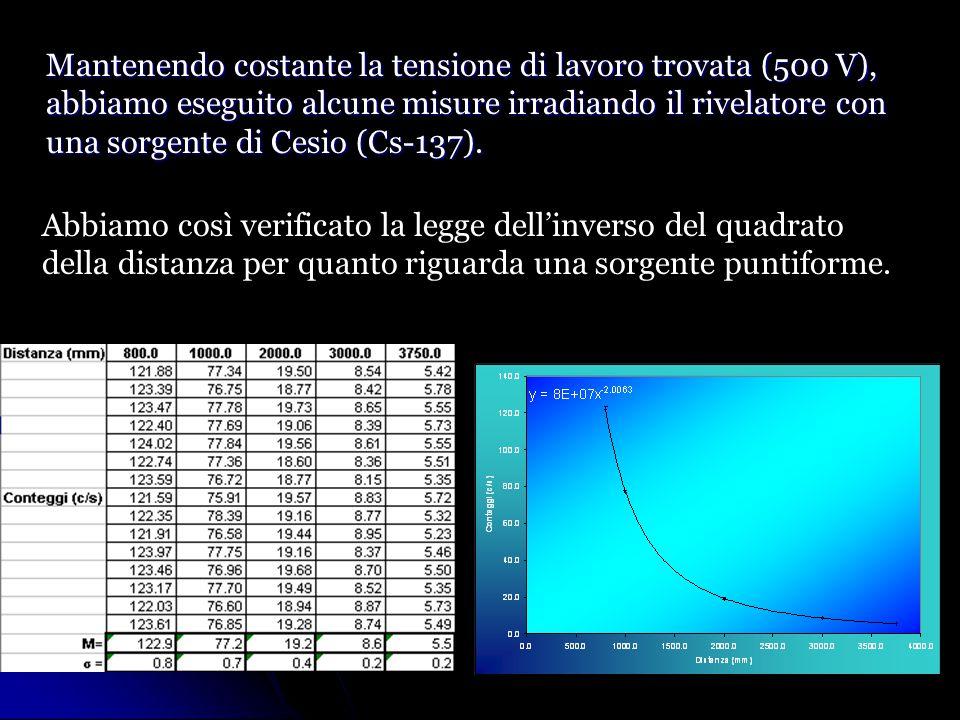 Mantenendo costante la tensione di lavoro trovata (500 V), abbiamo eseguito alcune misure irradiando il rivelatore con una sorgente di Cesio (Cs-137).