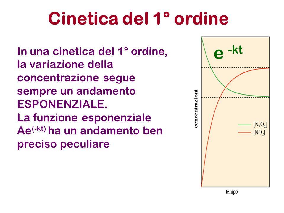 Cinetica del 1° ordine In una cinetica del 1° ordine, la variazione della concentrazione segue sempre un andamento ESPONENZIALE. La funzione esponenzi