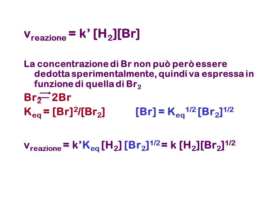 v reazione = k' [H 2 ][Br] La concentrazione di Br non può però essere dedotta sperimentalmente, quindi va espressa in funzione di quella di Br 2 Br 2