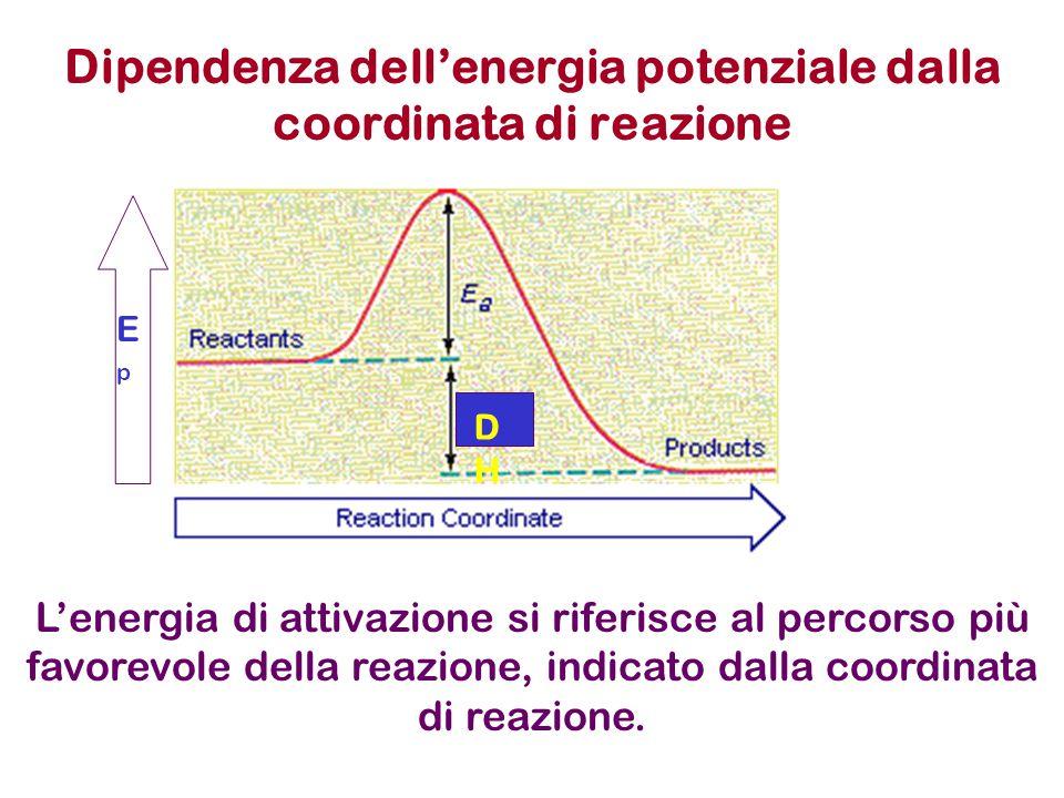 Dipendenza dell'energia potenziale dalla coordinata di reazione DHDH EpEp L'energia di attivazione si riferisce al percorso più favorevole della reazi