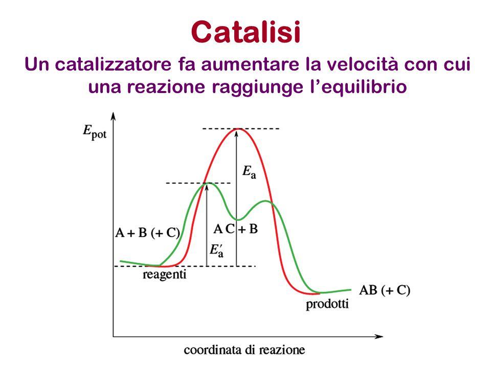 Catalisi Un catalizzatore fa aumentare la velocità con cui una reazione raggiunge l'equilibrio